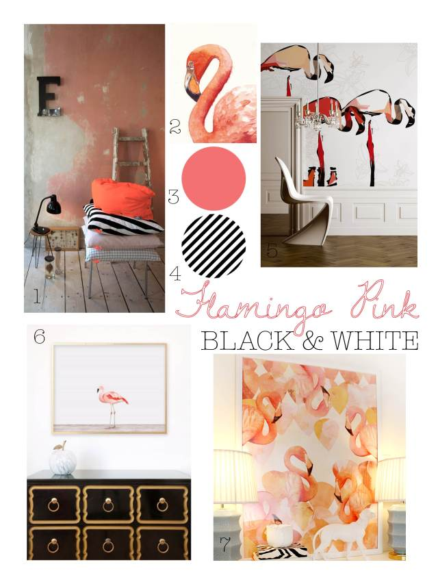 Color Inspiration: Flamingo Pink, Black, White